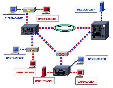 VLAN на базе MAC-адресов